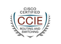 How many CCIE's are there worldwide? - Network Bulls