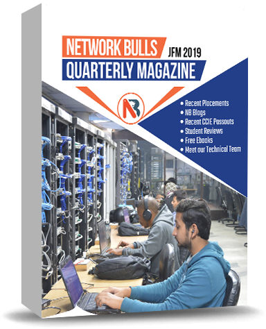 NB Magazine | Jan, Feb , Mar - 2019 - Network Bulls