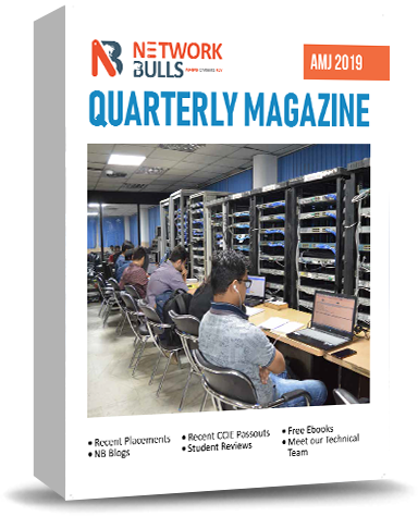 NB Magazine - Network Bulls
